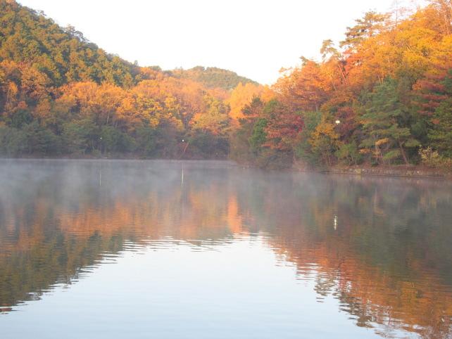 公園 宝が池